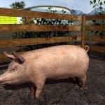 Скриншот Agricultural Simulator 2011 – Изображение 33