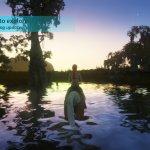 Скриншот Animallica – Изображение 16