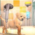 Скриншот PlayStation Vita Pets – Изображение 11