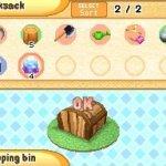 Скриншот Harvest Moon: Sunshine Islands – Изображение 3