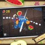 Скриншот Fruit Ninja