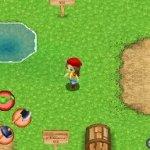 Скриншот Harvest Moon: Sunshine Islands – Изображение 10