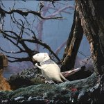 Скриншот Marvellous Mice Adventures: Meeting Sea Rat – Изображение 6