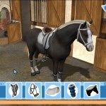 Скриншот Tim Stockdale's Riding Star – Изображение 1