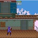 Скриншот Ninja Gaiden – Изображение 2
