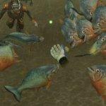 Скриншот Endless Ocean: Blue World – Изображение 3