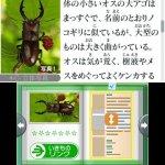 Скриншот Hana to Ikimo no Rittai Zukan – Изображение 10