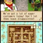 Скриншот Harvest Moon: Grand Bazaar – Изображение 11