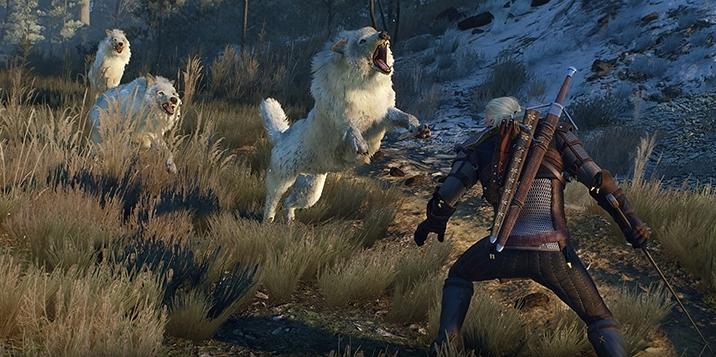 Все, что нужно знать новичку в The Witcher 3: Wild Hunt - Изображение 5
