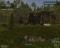 Wolf Simulator v1.0, скриншоты . Почти готовы к выходу в ранний доступ Steam. - Изображение 2