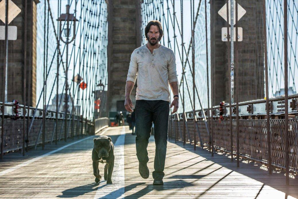 Новое фото из «Джона Уика 2»: собака Киану подросла - Изображение 2