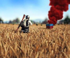 PUBG обогнала Fallout 4 иGTA 5 поколичеству игроков онлайн вSteam