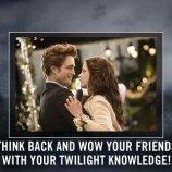 Скриншот The Twilight Saga – Изображение 5