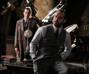 Гомосексуальность Дамблдора не будет затронута в «Фантастических тварях 2». Фанаты недовольны!