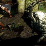 Скриншот Dark Souls – Изображение 5
