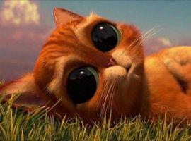 DreamWorks снимет продолжение «Кота всапогах». Имзаймется автор «Человек-паук: Через вселенные»