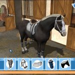 Скриншот Tim Stockdale's Riding Star – Изображение 8