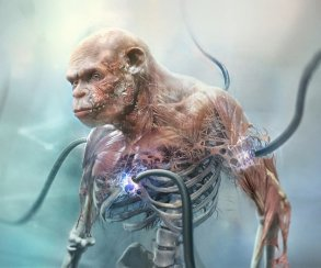 Новые подробности Beyond Good and Evil 2: раса обезьян-рабов, детали сюжета иносорог-растаман
