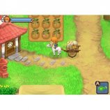 Скриншот Harvest Moon: The Tale of Two Towns – Изображение 1