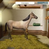 Скриншот Pippa Funnell: The Stud Farm Inheritance – Изображение 4