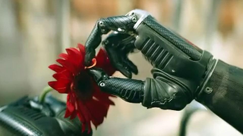 Первые впечатления отсериала «Толя робот»: смешная комедия, которая могла стать лучшим шоу cезона | Канобу - Изображение 0