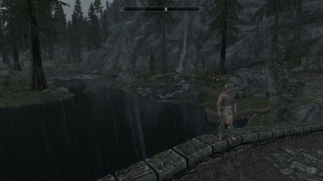 Ничего не видно! Энтузиаст сделал в Skyrim невероятно реалистичный ливень   Канобу - Изображение 245