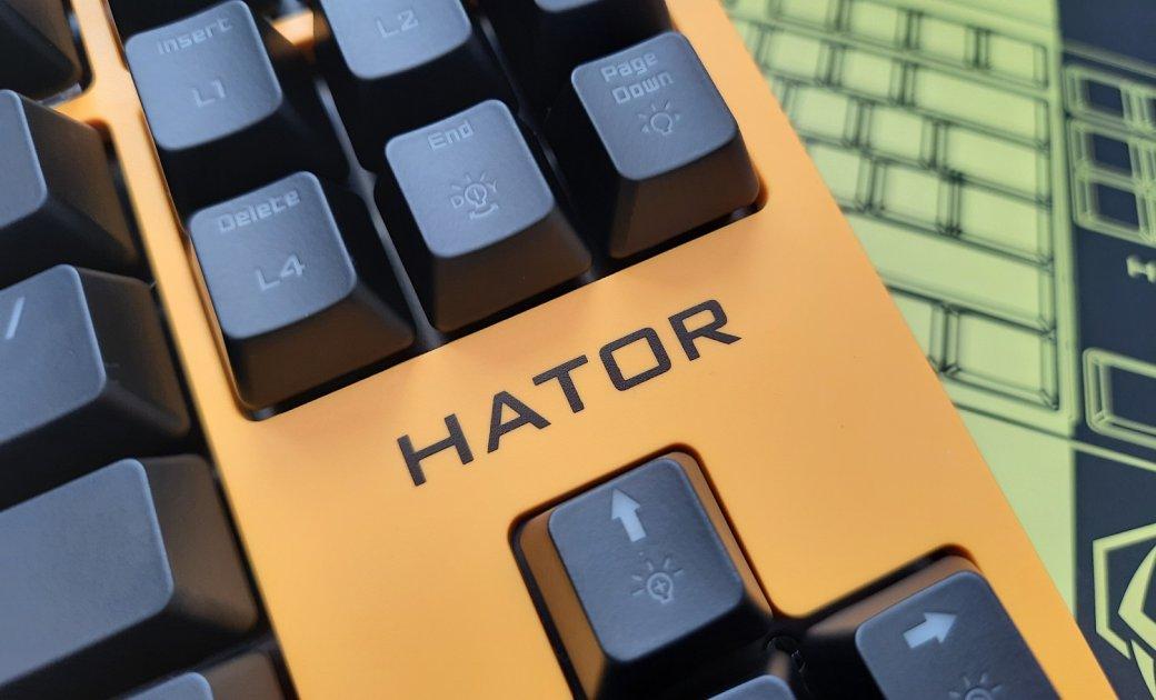 Обзор клавиатуры Hator Rockfall EVO TKL. Бюджетная оптическая клавиатура | Канобу - Изображение 1450